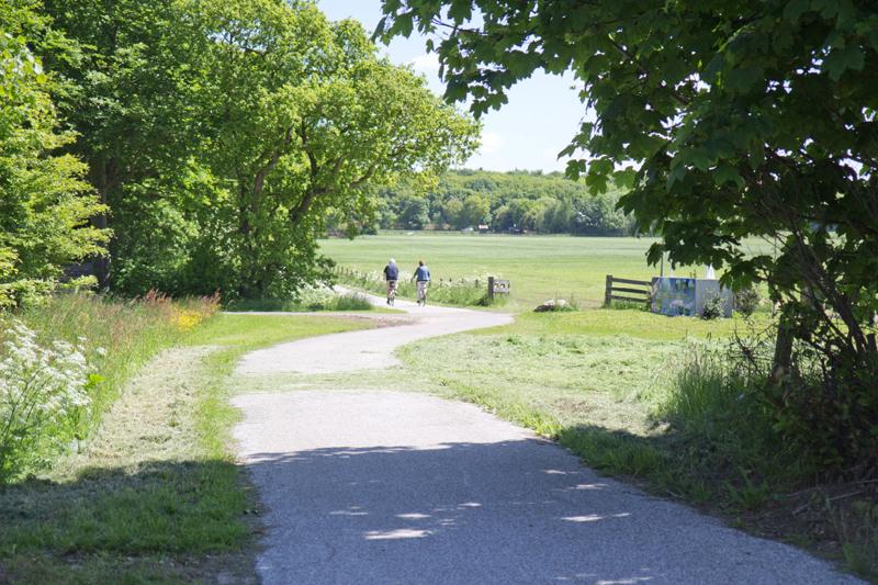 fietsen in Gaasterland