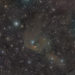 Hind's variable nebula