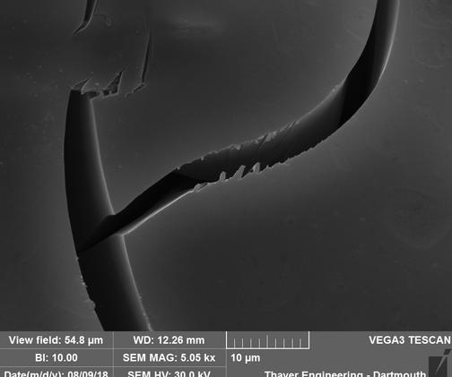 Electron microscope images of the breakpoints
