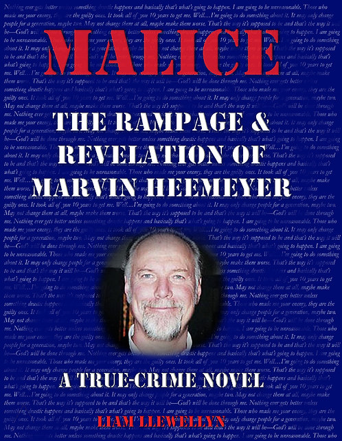 Malice: The Rampage and Revelation of Marvin Heemeyer paperback