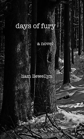 Days of Fury by Liam Llewellyn, published by L.L. Press and Liam Llewellyn.