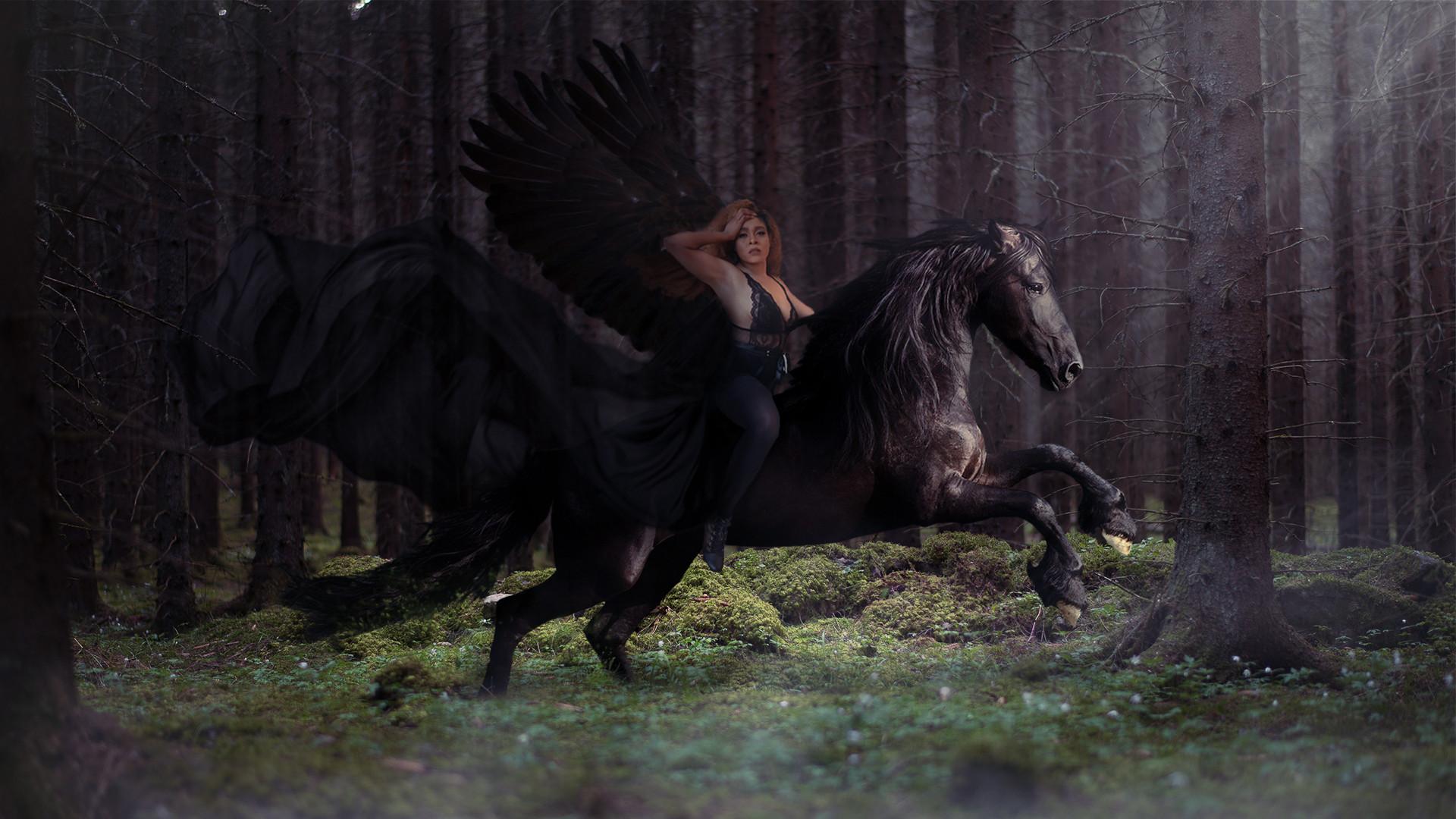 horse2 (1).jp