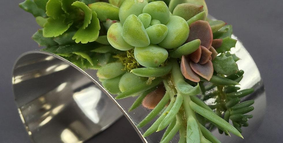 Medium Succulent Cuff