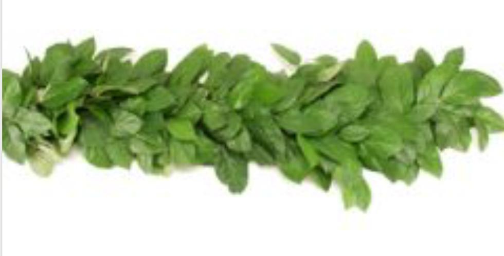 Greenery Garland Salal and Lemon Leaves