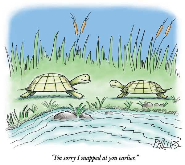 Snapping-turtles.op.jpg