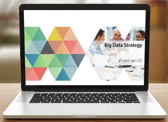 Big Data Strategy - curso eLearning