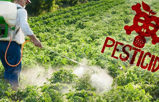 Do Pesticides Make Us Dumber?