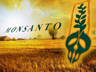 Letter to Monsanto Employees