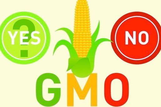 What's a GMO?