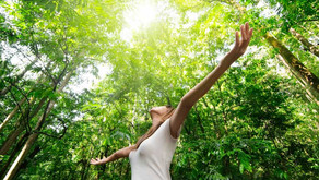 Holistic Health With Medical Intuition