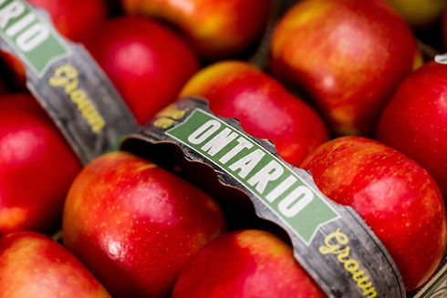 Ontario Grown, apples, shop local