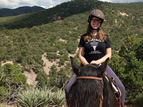 TL Advisor Stephanie Williamson Just Back from New Mexico