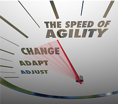the speed of agility, momentum selling
