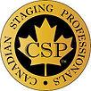 CSP 2.jpg
