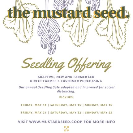 Seedling Sale 2021