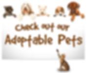 adoptable-pets.jpg