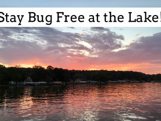 10 Ways to Stay Bug Free at the Lake