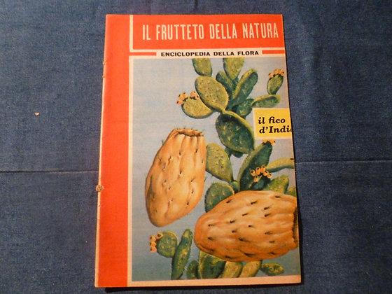 Enciclopedia della Flora - Il frutteto della natura - il fico d'India - 1962