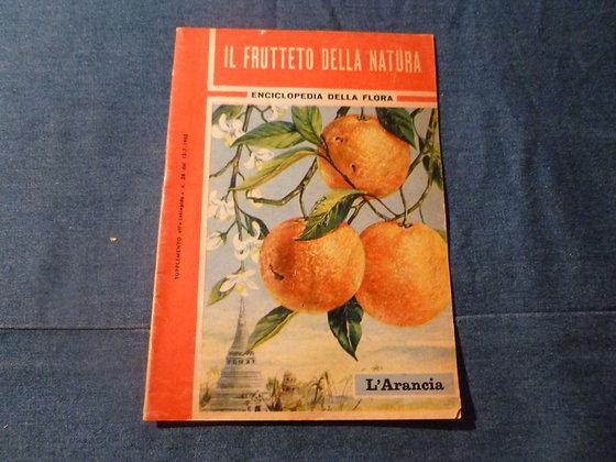 Enciclopedia della Flora - L'arancia - 1962