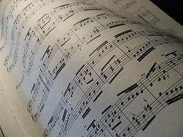 Yeşilköy Müzik Atölyesi - Batı Müziği ve Solfeji dersleri