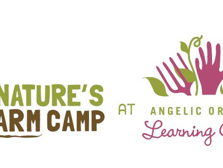We evolve…and partner with Angelic Organics Learning Center!!!