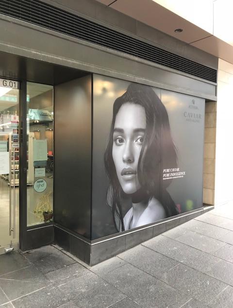 Window Display (Alterna)