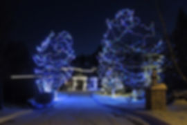 Christmas Tree Lighting Installation in Woodbury, Minnesota