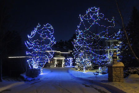 Christmas Tree Lighting Installation in Woodbury, Minnesota