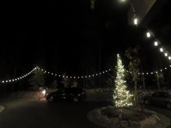 Wedding Bistro and Tree Lighting