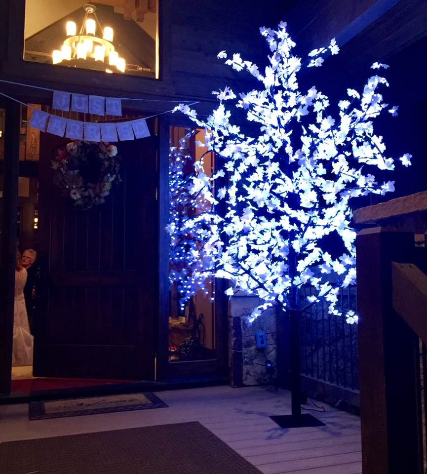 Cool White Wedding Tree Lighting