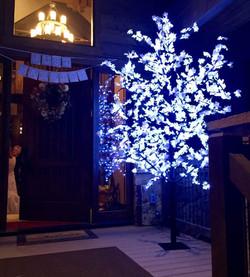 Cool White Wedding Tree Lighting