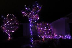 Halloween LED Purple & Orange Lights