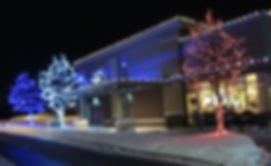 MN Business Roofline and Tree LED Lighting Installation in Richfield, MN