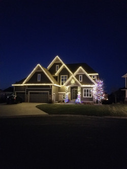 Warm White and Multi-Colored LED Lights