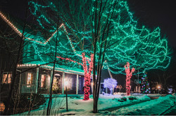 Warm White, Green, Red, and Multi-Colored LED Lights