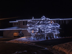 Cool White Roofline & Tree Lights