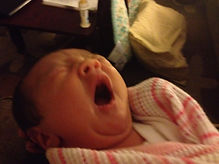 Yawn!.jpeg