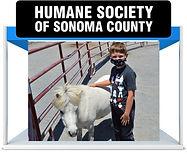 Humane-Society.jpg