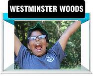 Westminster-Woods.jpg