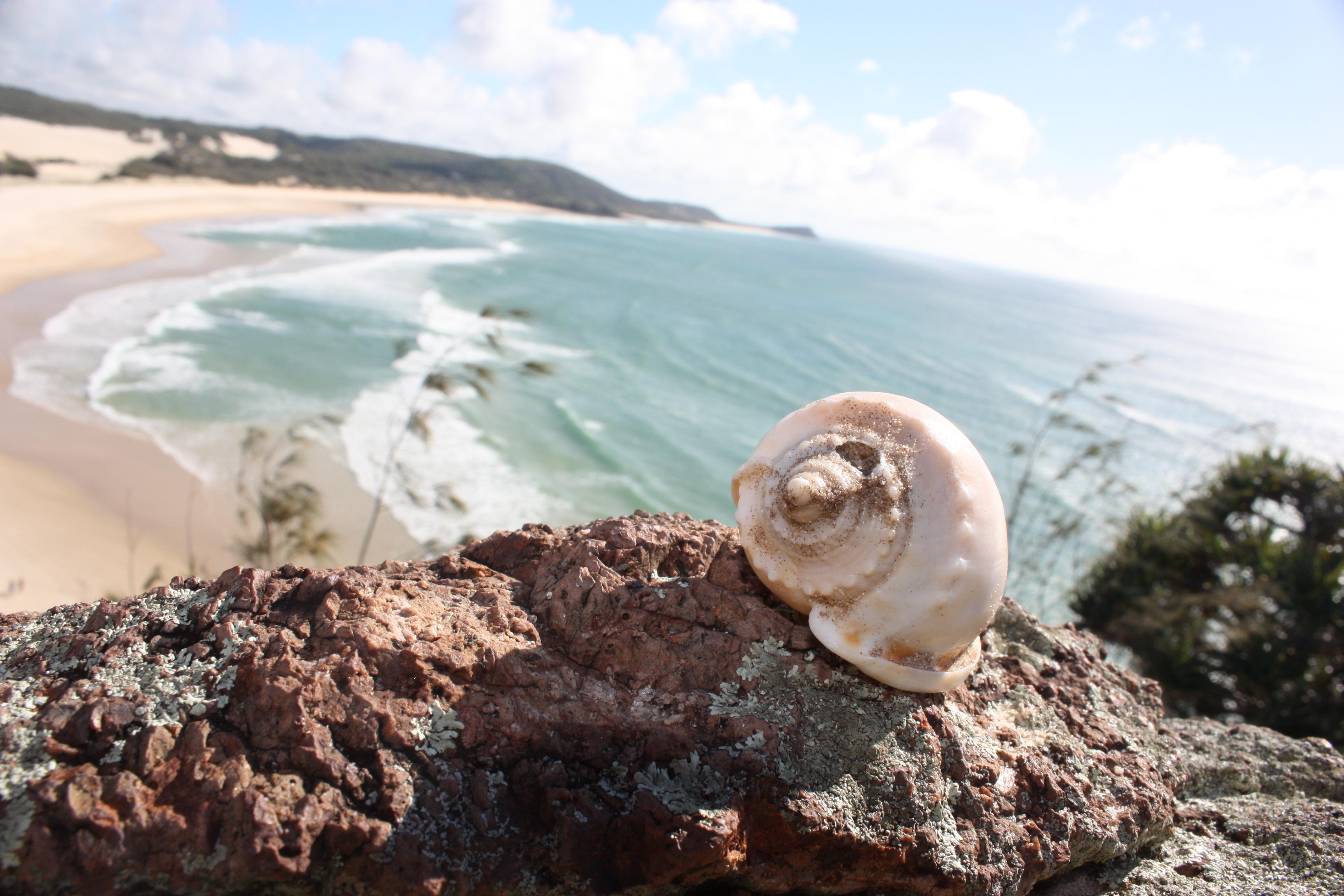 Frasier Island, Australia.