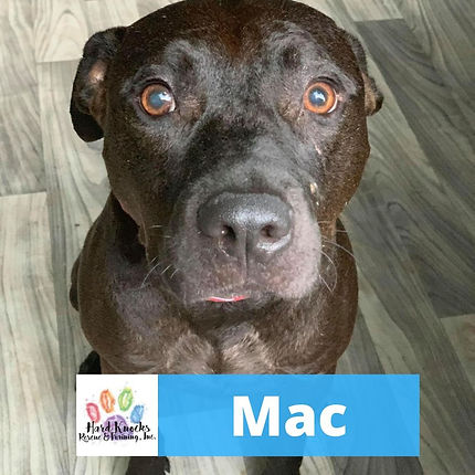 mac cover.jpg