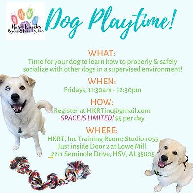 Dog Play time.jpg