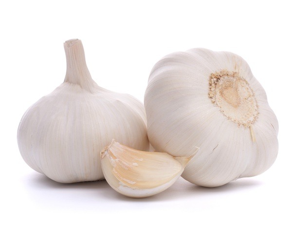 Garlic-2[1]