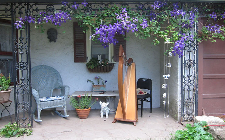 harp under chupa
