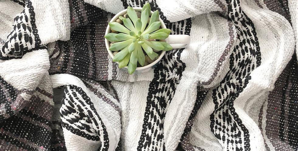 Coal // Falsa Blanket