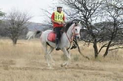 Endurance South Africa