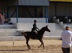 Hendri Egyptian Pearl & Ingeborg Hernes in Novice Riding Horse 01