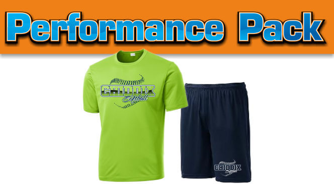 Team Performance T-shirt and Shorts package