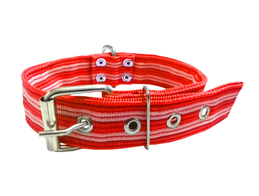 Collar pitbull nylon rojo