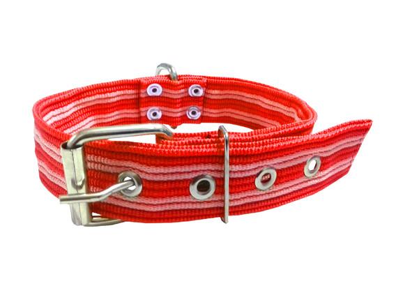 Collar pitbull nylon rojo